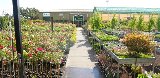outdoor garden centre display