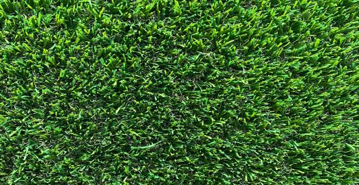 section of nature 35mm lawn turf