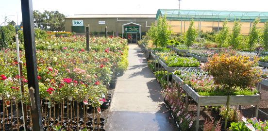 outdoor area of all green garden centre