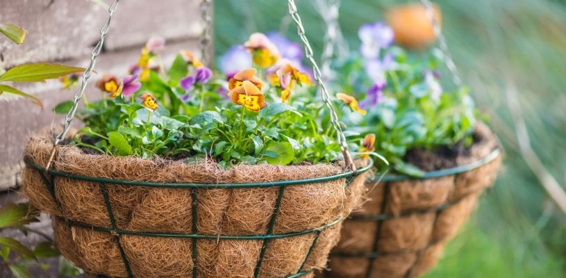 hanging baskets garden decor