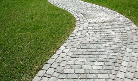 The best grass for pavers