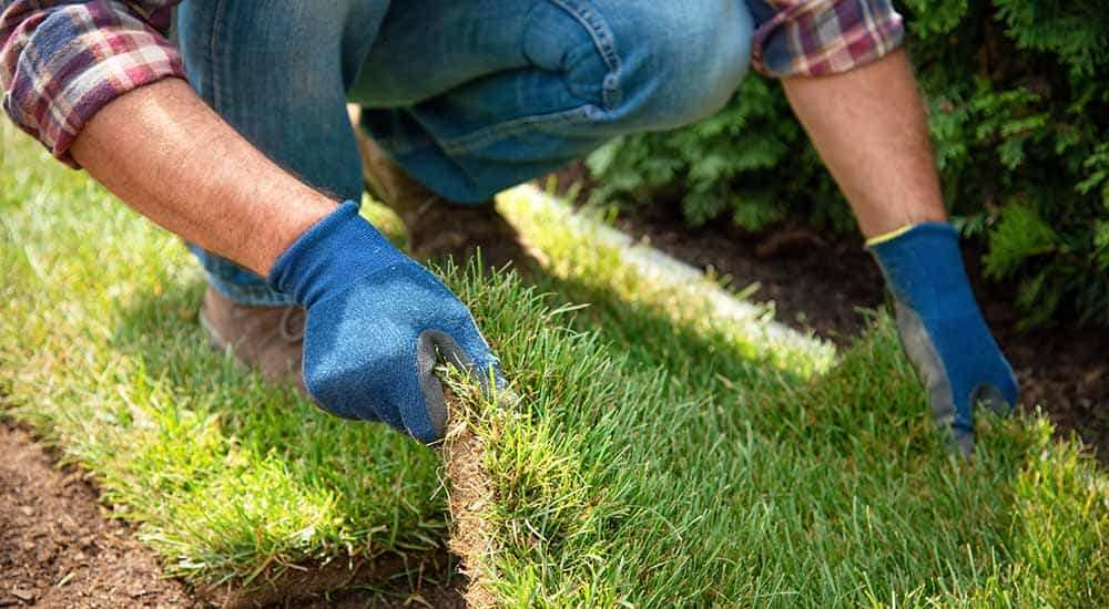 how to prepare soil for turf