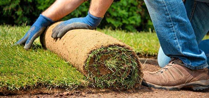 soil for turf laying