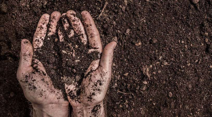 Soil preparation and testing is incredibly important for fine and outstanding turf excellence