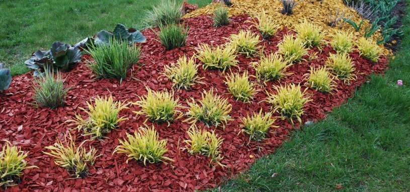 mulch decorative feature