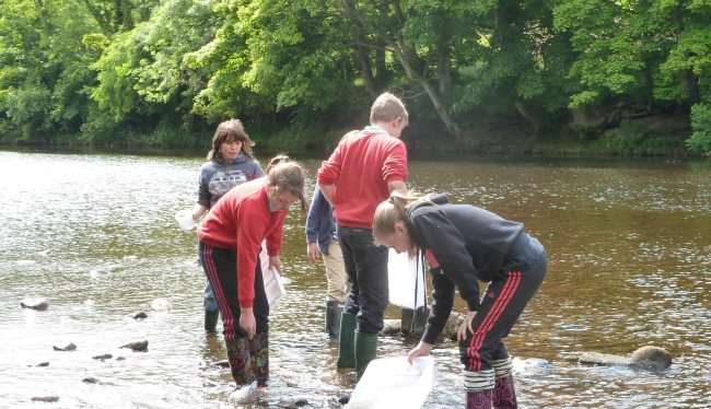 river dipping take a challenge