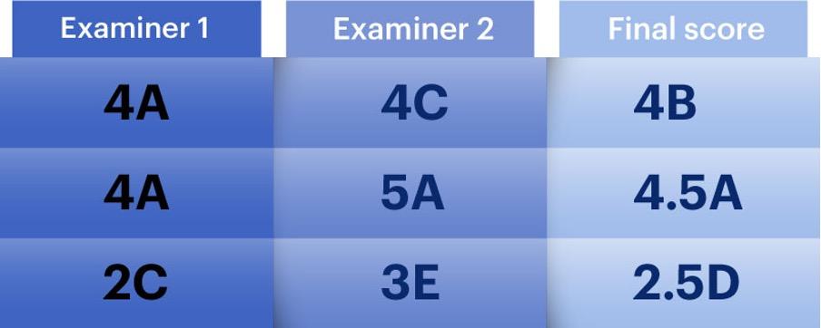 Examiner assessment averages BMAT exam