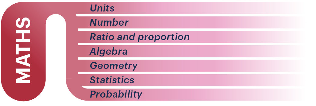 BMAT Section 2 Maths infographic