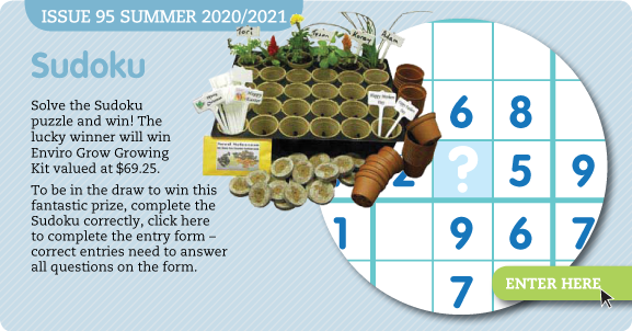 Complete the Sudoku and win!