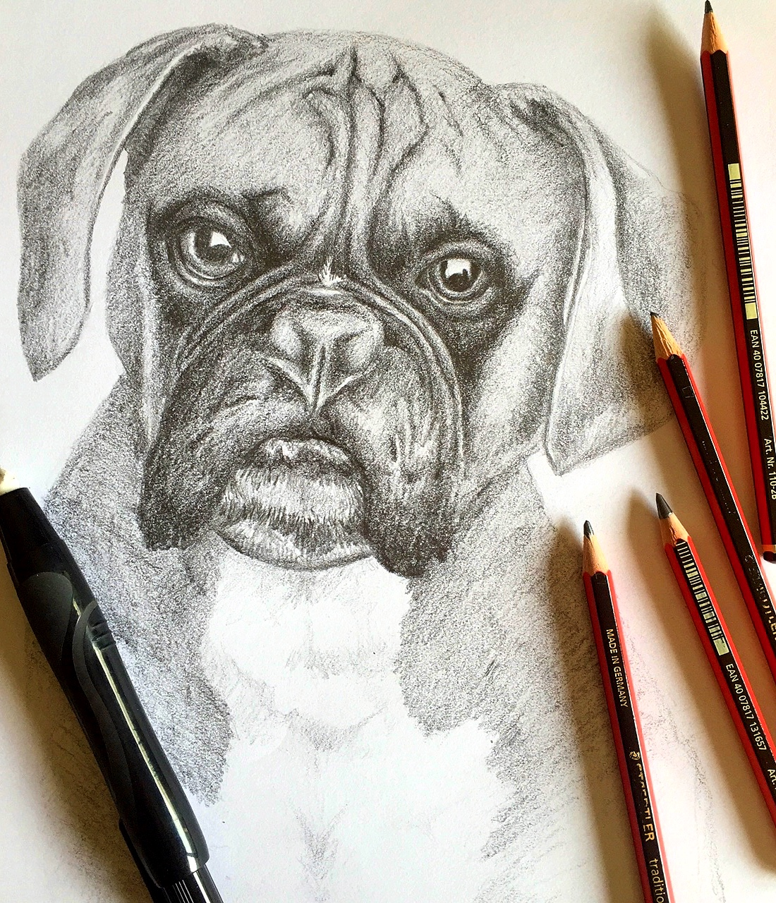 Drawing of Dog 'Bryson.' Graphite on paper.