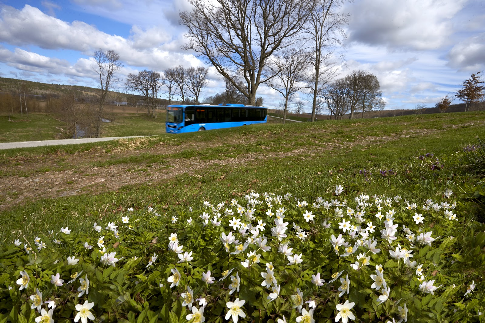 moving blue bus