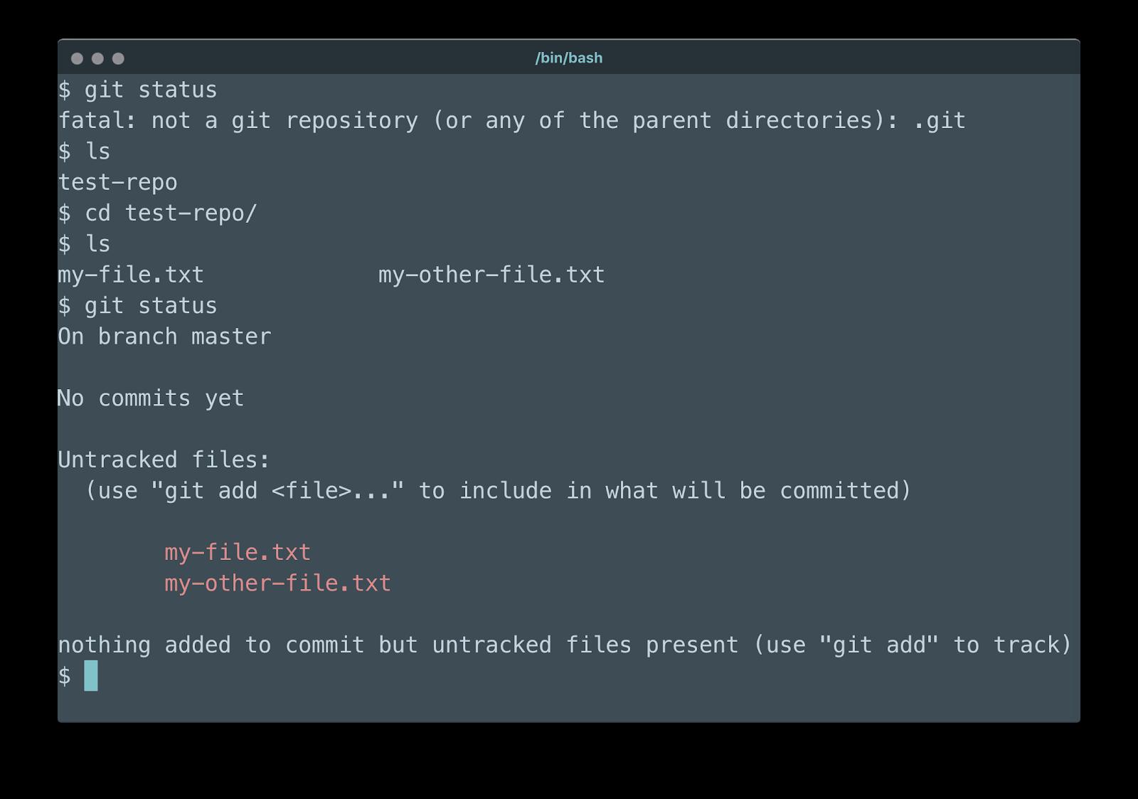 Bin - Git Status