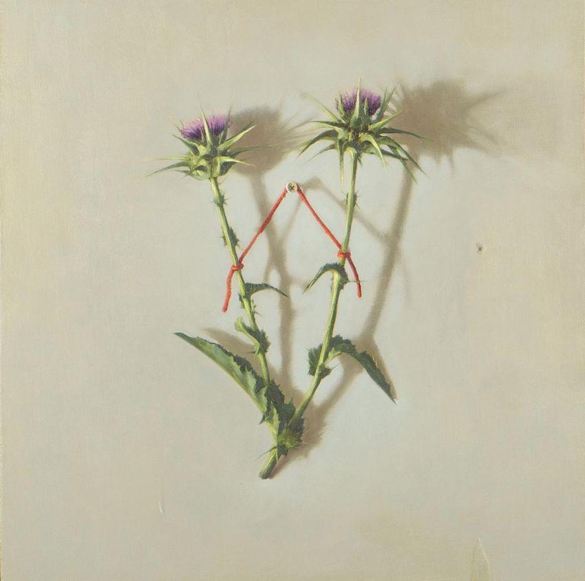 Erez Aharon, Untitled