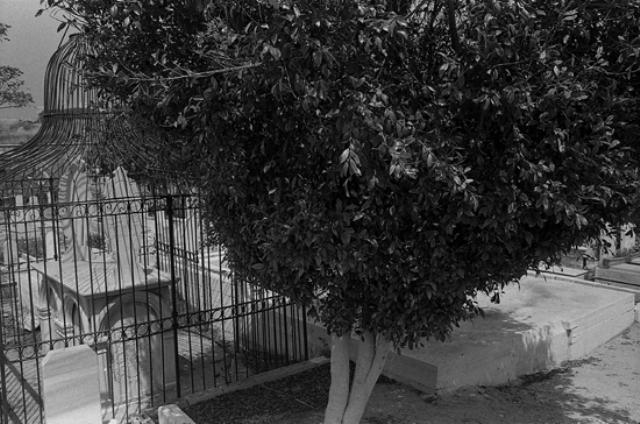 Simcha Shirman, Acre, Muslim Grave