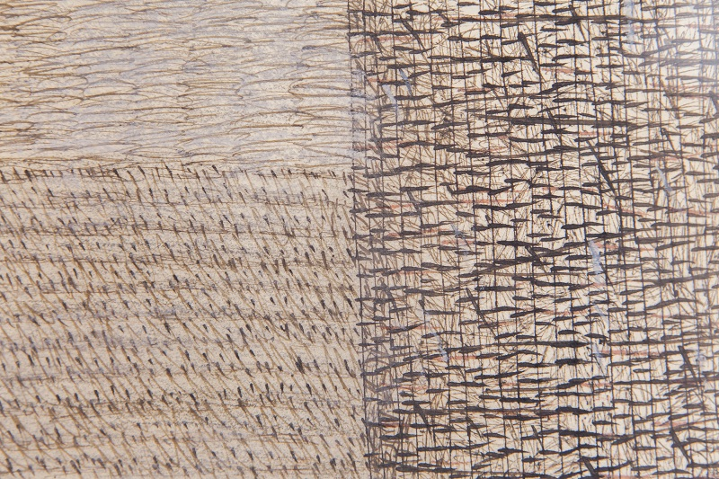 Pnina Reichman, John Cage, detail