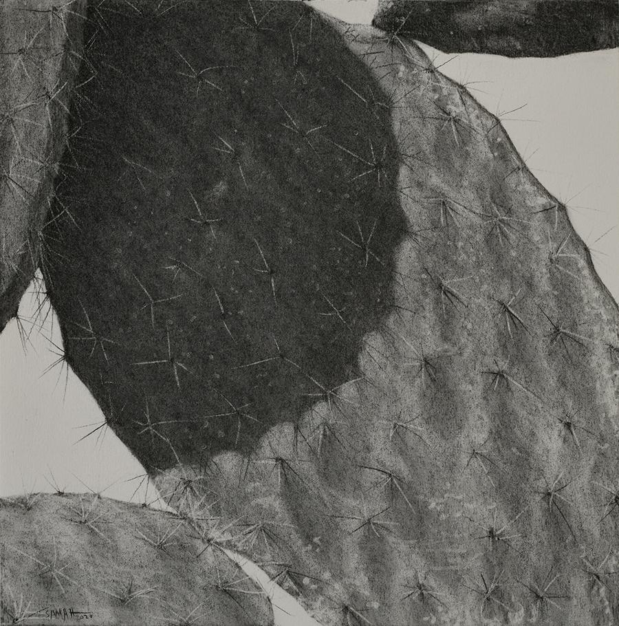 Samah Shihadi / From The Landscape Series # 9