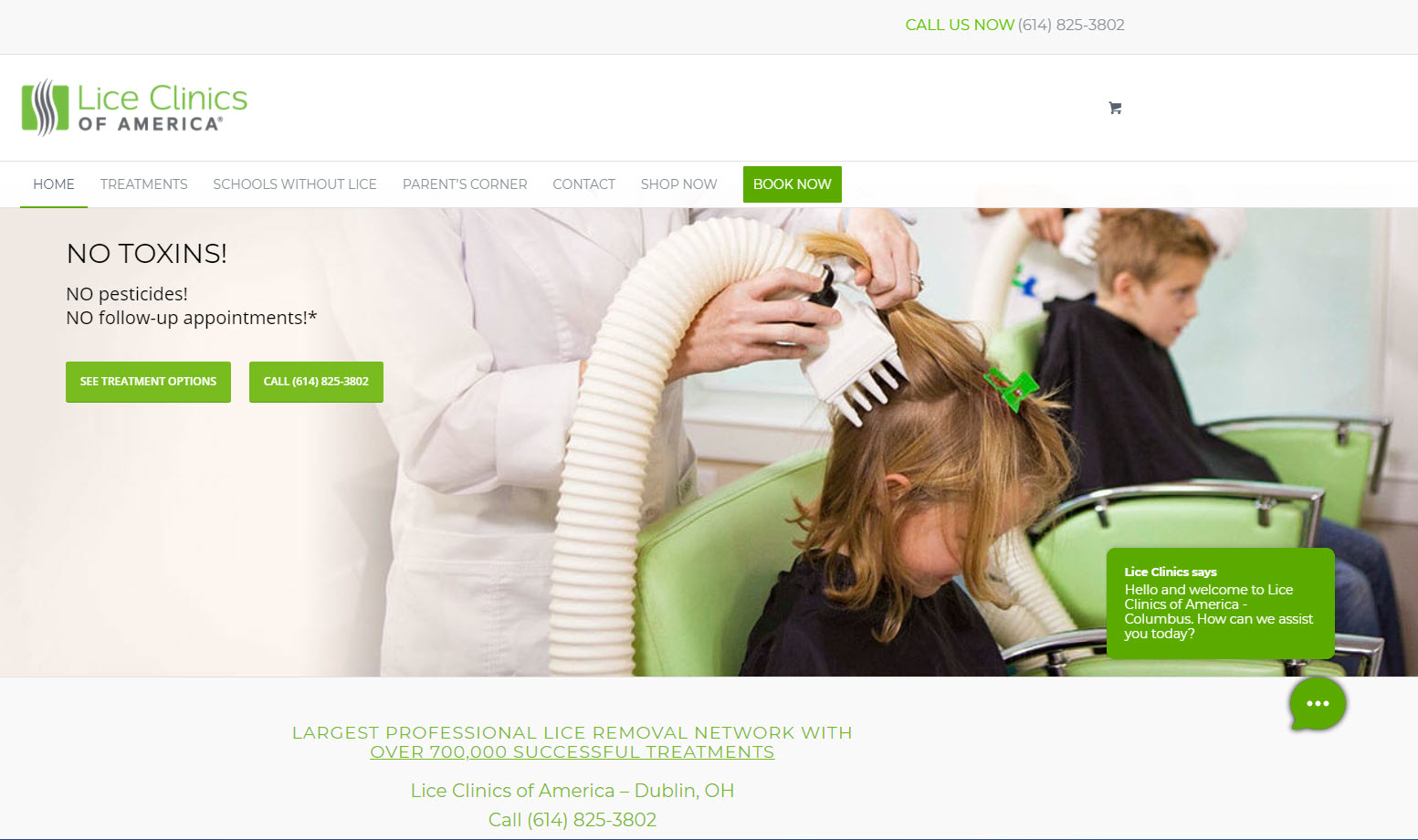 Proactive chat message on Lice Clinics Dublin OH website by Rake