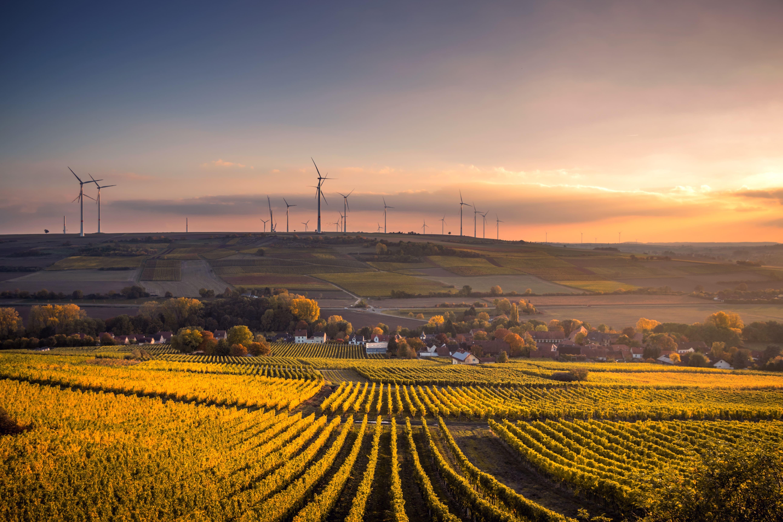 windmills on a hill behind a field