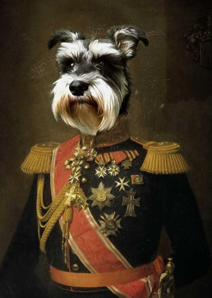 Mac Levy the Regal Dog