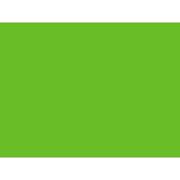 Grön Checkmark