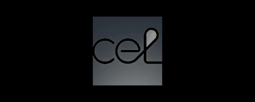 Centre for Environmental Law logo