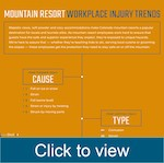 Mountain resort workplace injury trends
