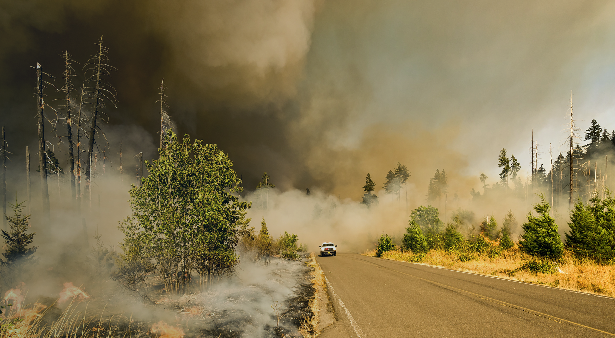 Wildfire season and the claims process