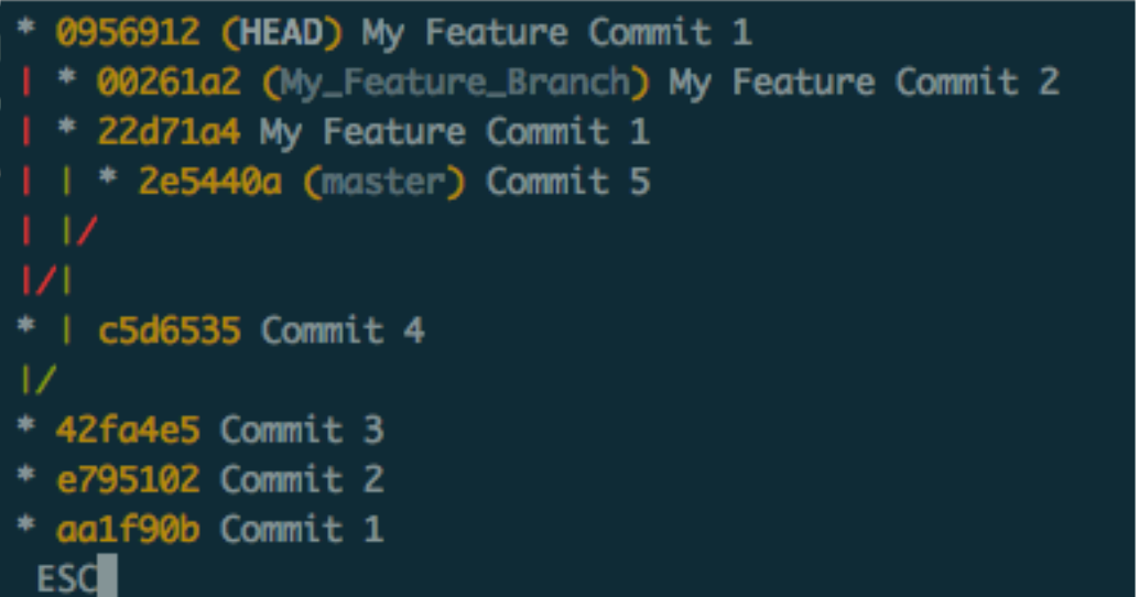 git log after rebase
