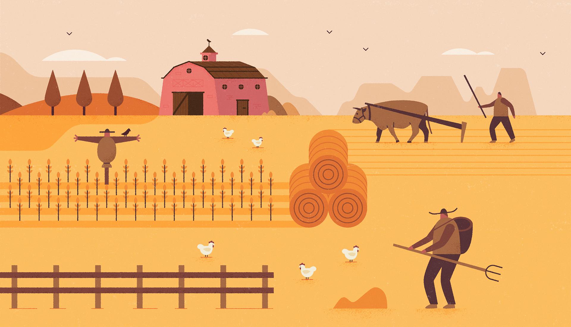 Harvest illustrations