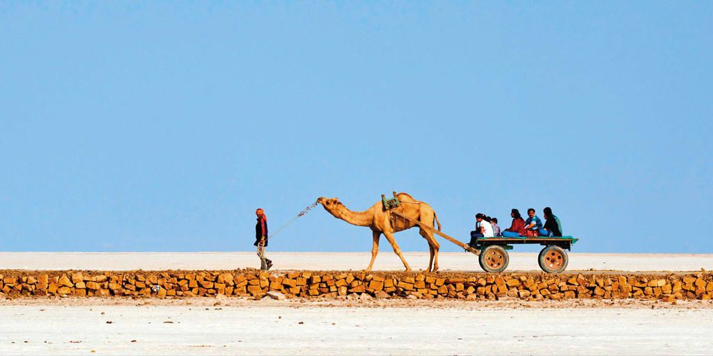 Places to visit in January in India - Rann of kutch
