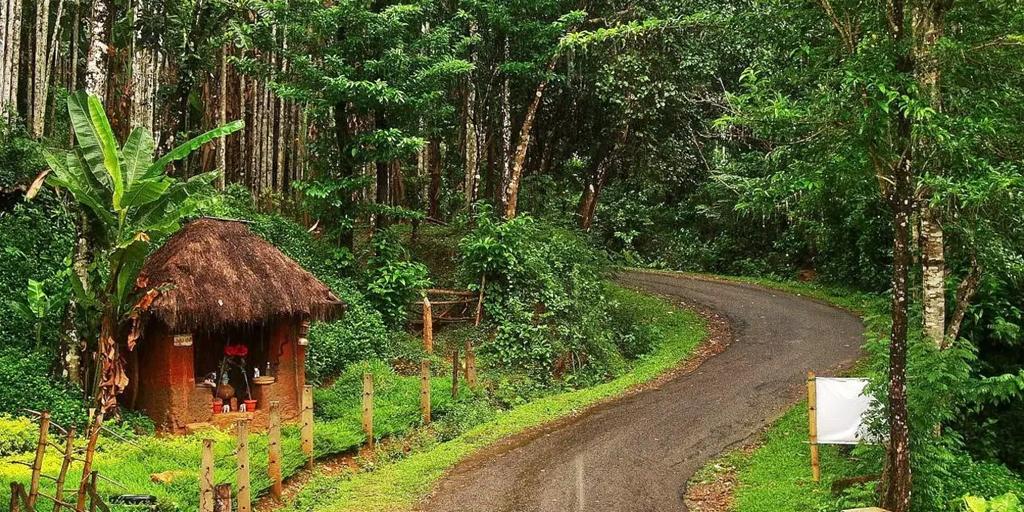 hill stations near Bangalore - Agumbe