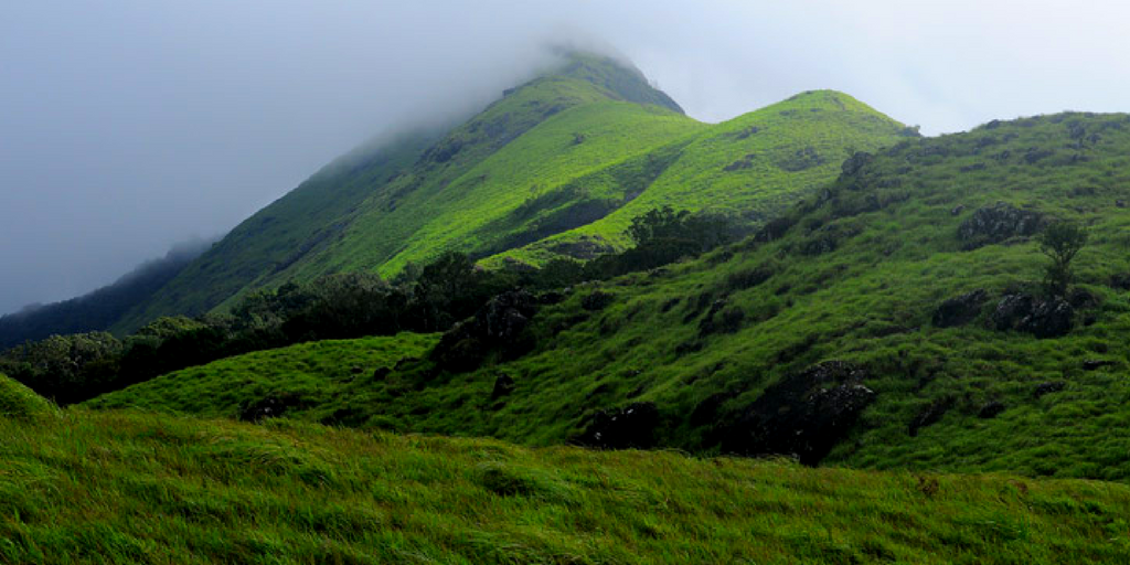 Things to do in Wayanad - Chembra Peak Trekking