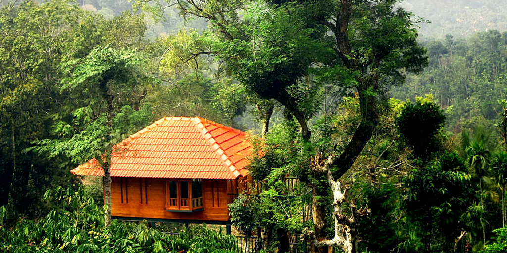 Things to do in Wayanad -Marmalade Springs