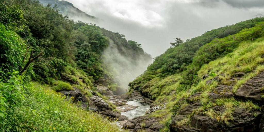 weekend getaways near Pune - Andharban Trek
