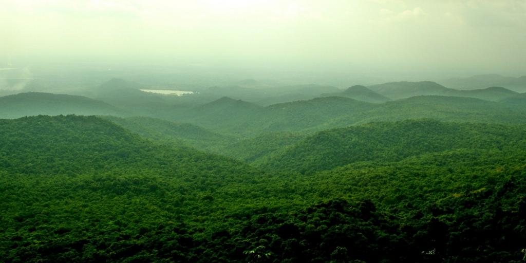weekend getaways from Bangalore - br hills