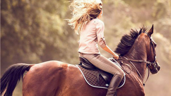 Horse Riding: Things to do in Delhi