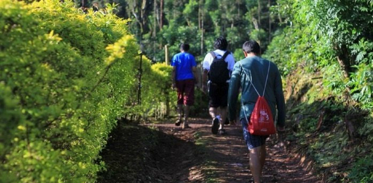 Trekking- Things to do in Bangalore