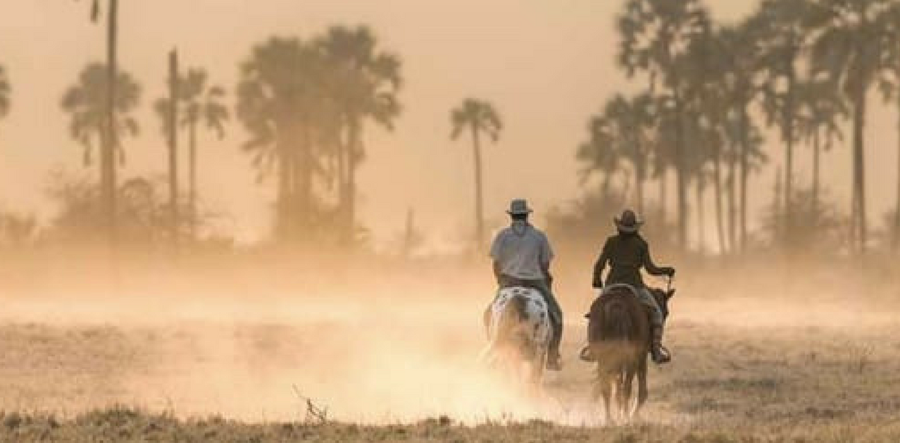 Horse Riding- Things to do in Bangalore