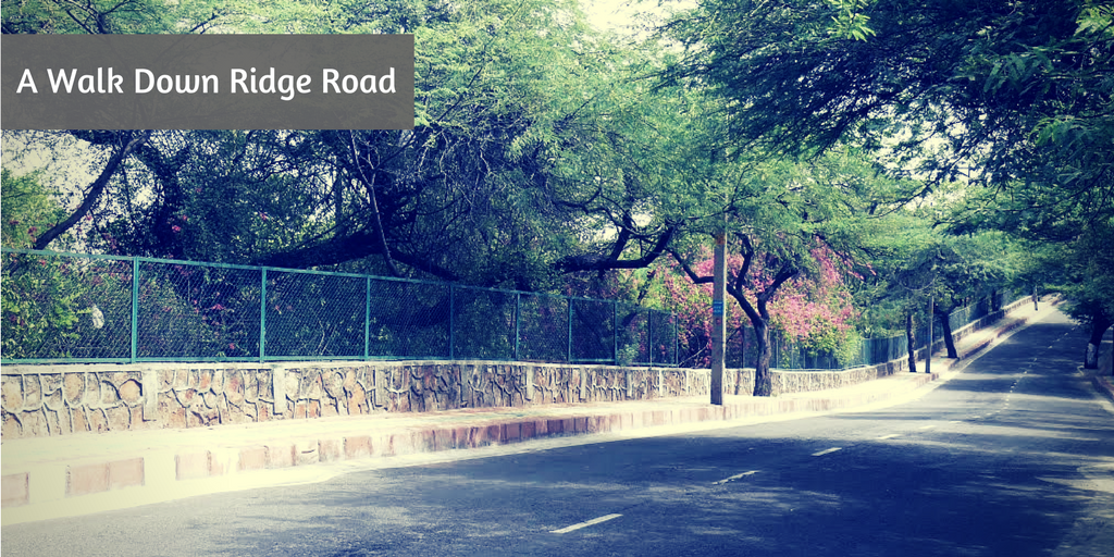 10 romantic things to do on Valentine's Day in Delhi ridge road