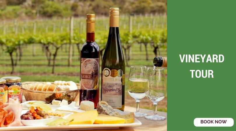 romantic things to do in bangalore vineyard tour
