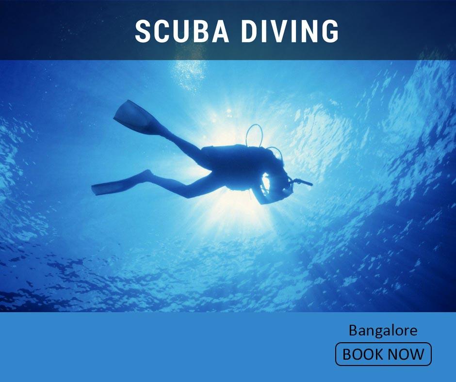 fun things to do in bangalore scuba diving