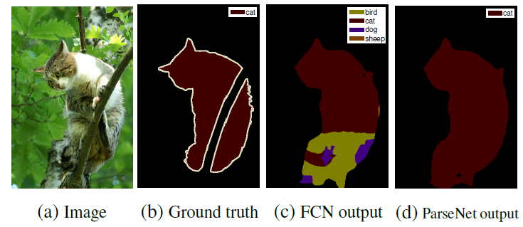 Ground truth, FCN output and ParseNet output shown using a picture of a cat on the tree