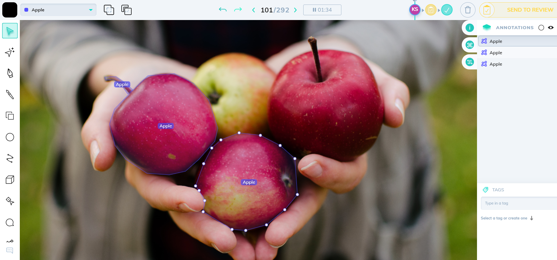 Apples annotated using the polygon tool un V7