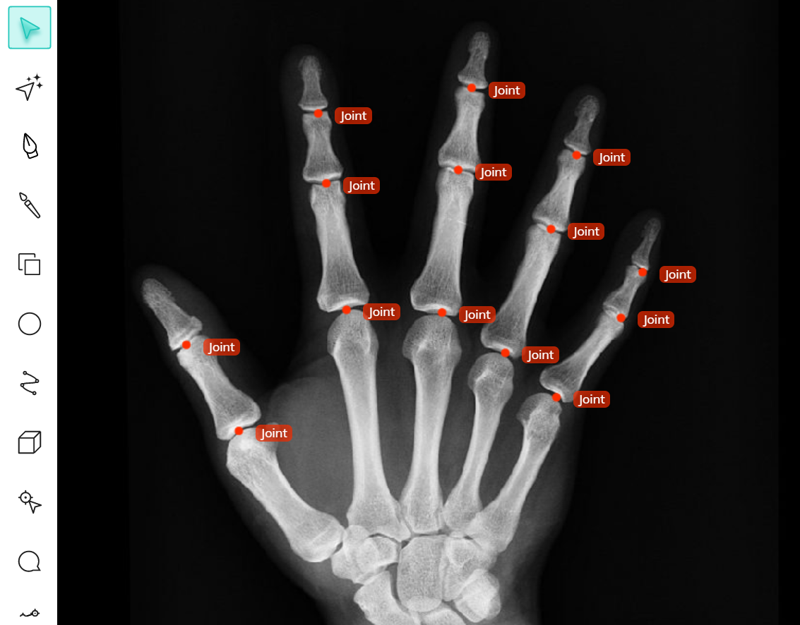 Keypoint annotation of joints in V7