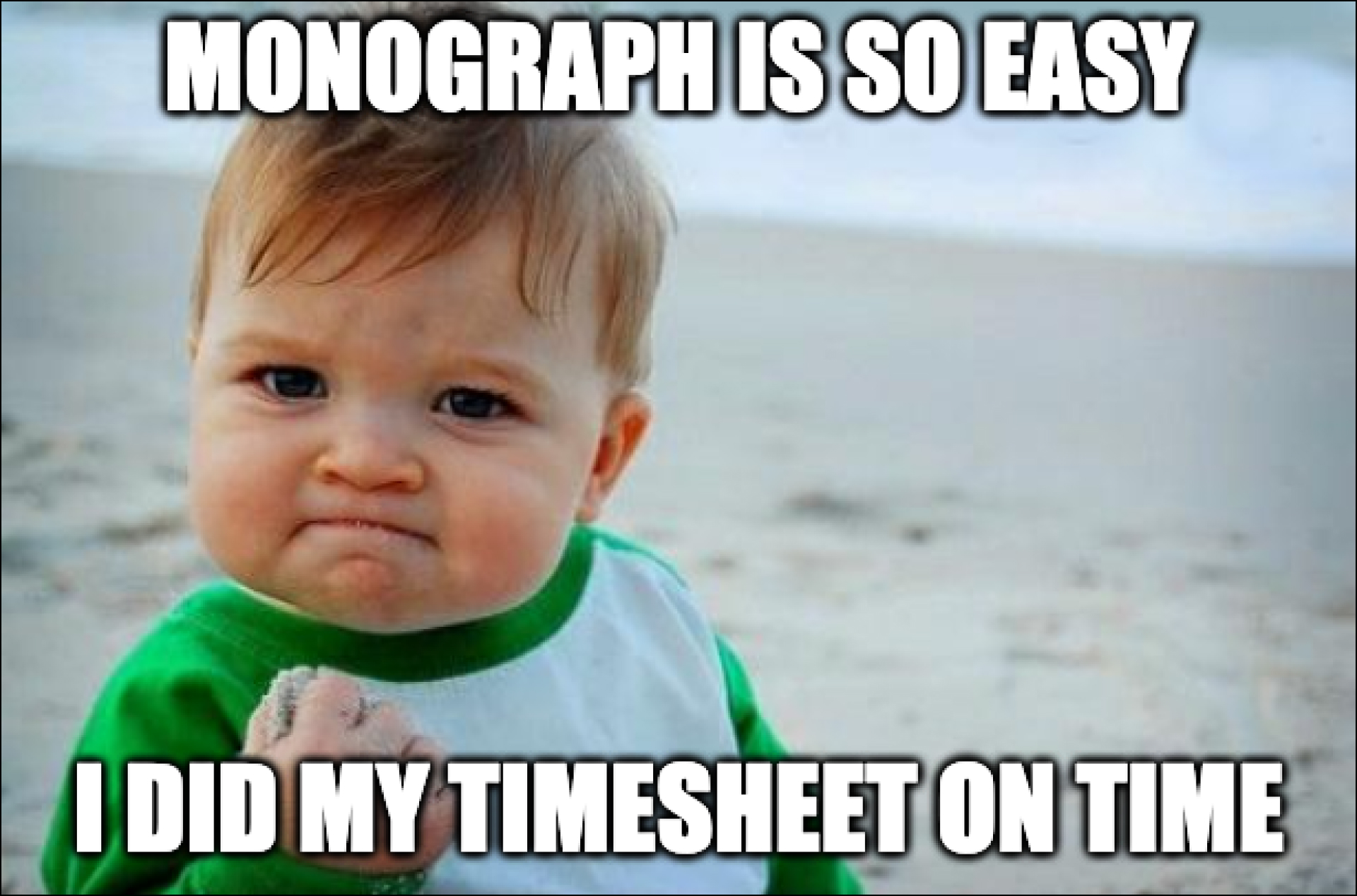 Monograph is so easy - I did my timesheet on time