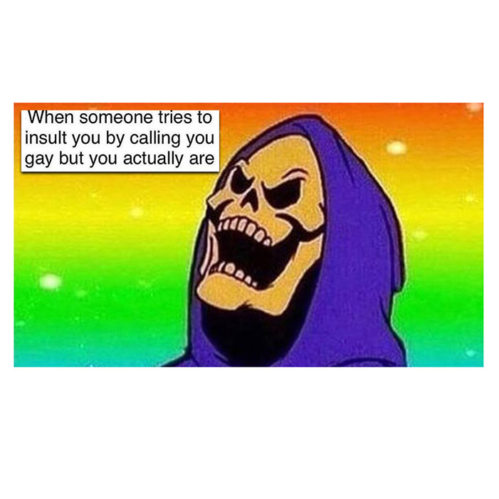 TRY INSULT PRIDE MONTH MEME