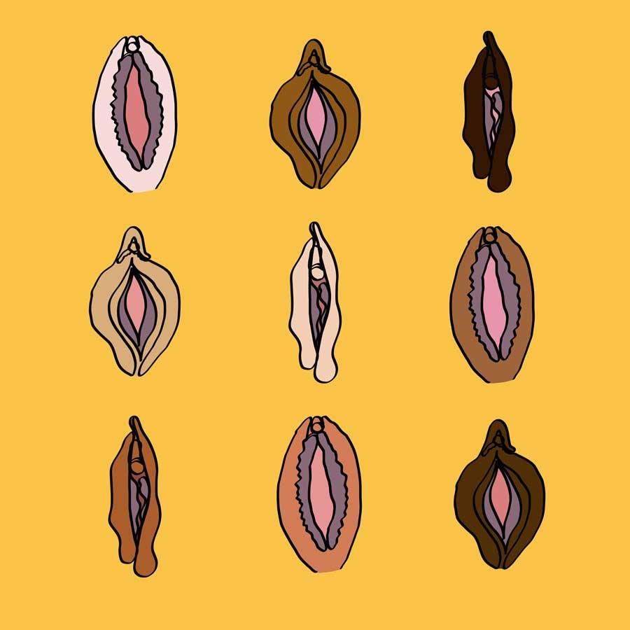 Labia Diversity