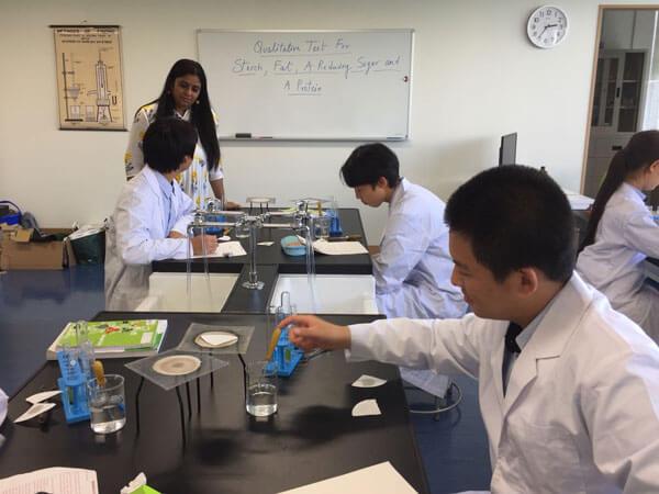 Secondary School Students Learning in Laboratory  at GIIS Tokyo Higashi Kasai Campus