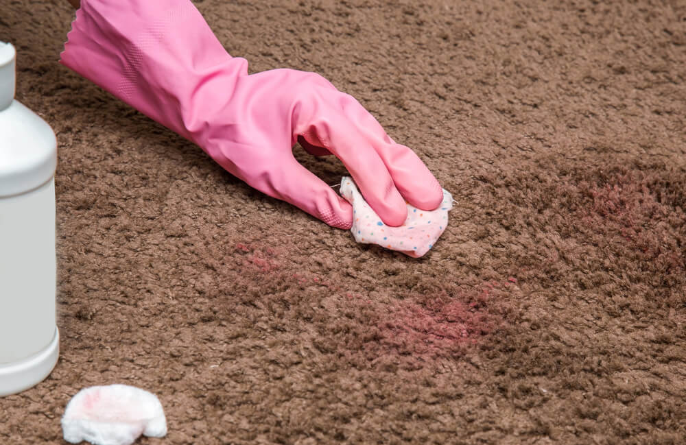 A person blotting a nail polish stain out of carpet