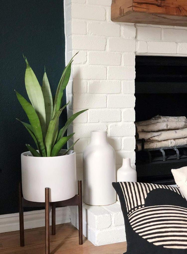 A plant near a fireplace.